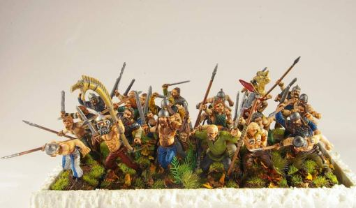 These are Warlord Games plastic Celt Warriors